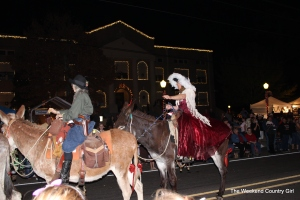 What parade would be complete without ladies in formal dresses riding mules?