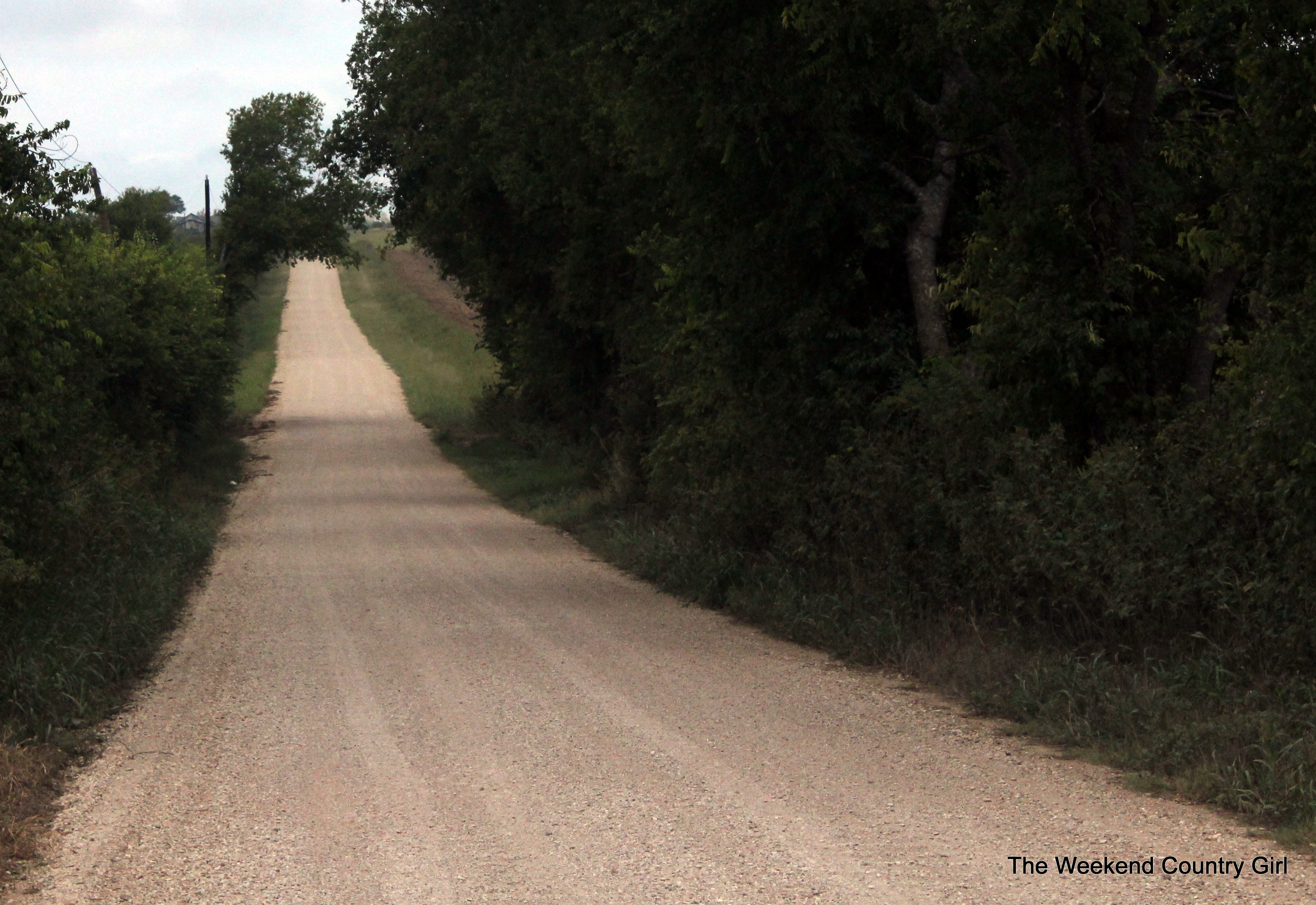 road to the farm