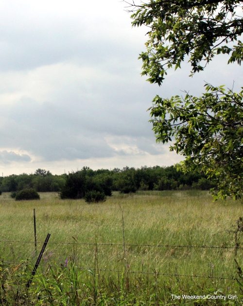 troy farm