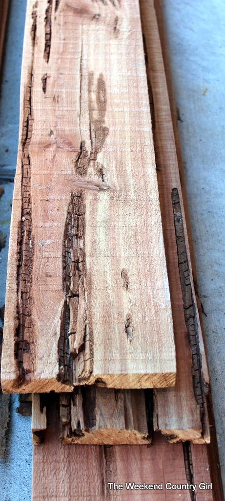 cedar wormy