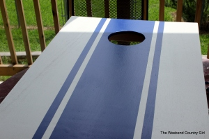 blue corn hole set